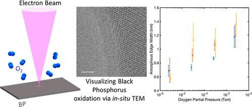 Engineers advance insights on black phosphorus as a material for future ultra-low power flexible electronics
