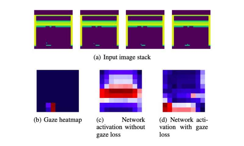 Enhancing imitation learning algorithms using human gaze data