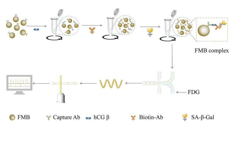Evaluating embryo quality with ultrasensitive protein detection
