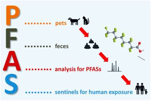 Fecal excretion of PFAS by pets