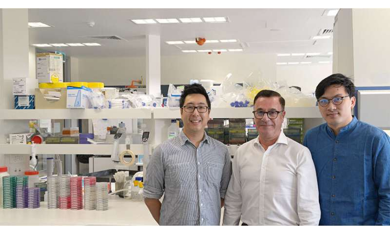 Fighting the rise of antibiotic resistance