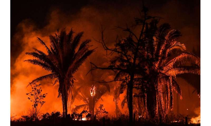 Fire burning along the BR163 highway in the Amazon rainforest September 2019; experts fear the 2020 fire season could be worse