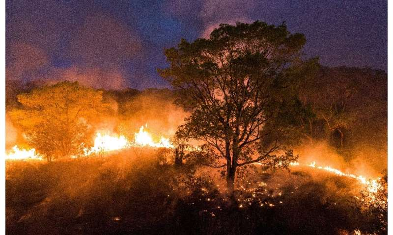 Fire raging in the Pantanal wetlands, Mato Grosso State, Brazil, on August 28, 2020, in a handout image picture released by Proj