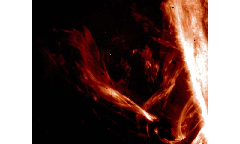 First direct observation of elusive waves reveals the energy channels in the solar atmosphere