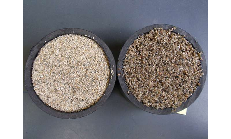 First look at a sustainable agricultural mulch