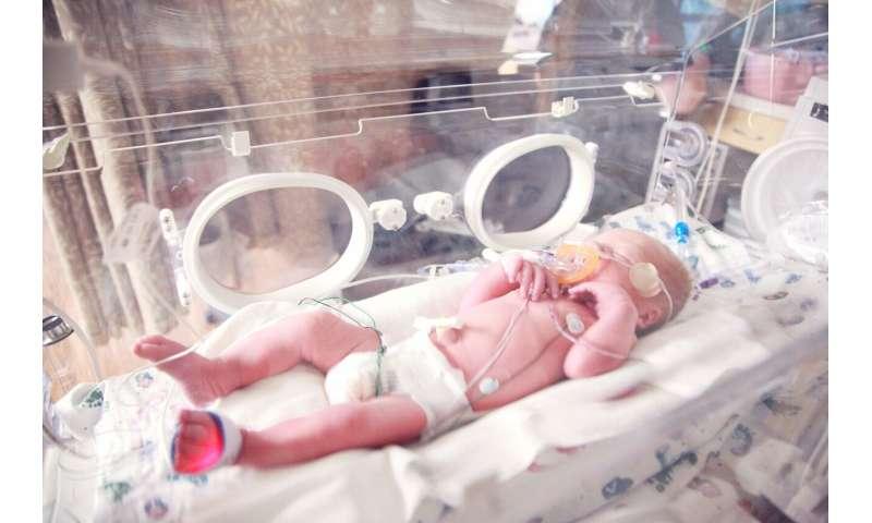 Primer tratamiento más cercano para una enfermedad mortal que afecta a los bebés prematuros