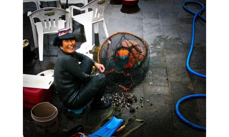 Fisherwomen contribute tonnes of fish, billions of dollars to global fisheries