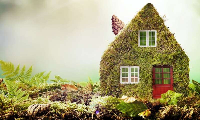 Five cost-effective ways to reduce your carbon footprint at home