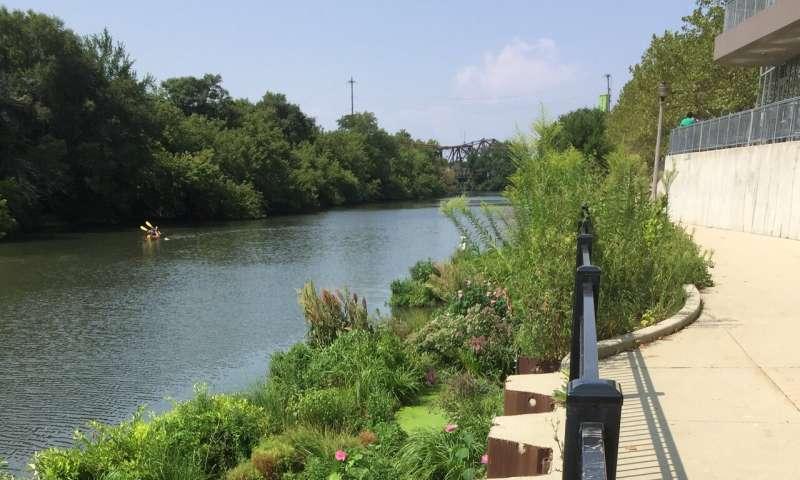 Jardines flotantes: más que un bonito lugar