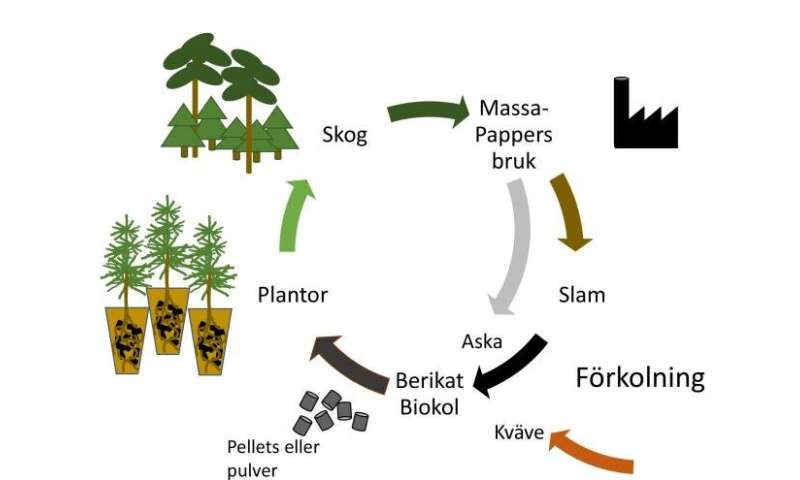 Forest fertilisation with paper mill residues