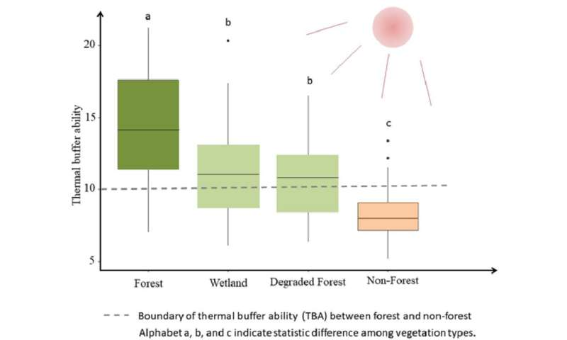 Forests have higher thermal buffer ability than non-forests
