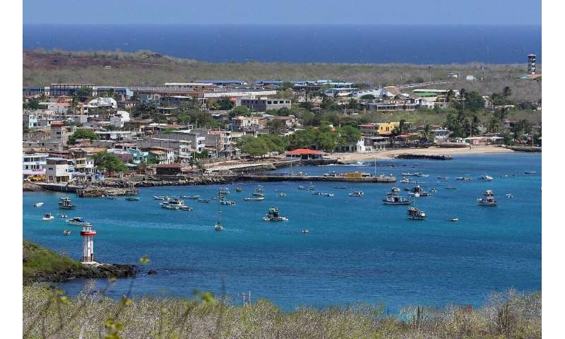 Four permanent residents of the Galapagos archipelago have tested positive for the COVID-19 disease