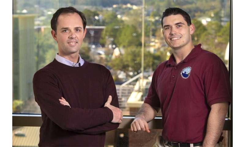 FSU Research: Despite less ozone pollution, not all plants benefit