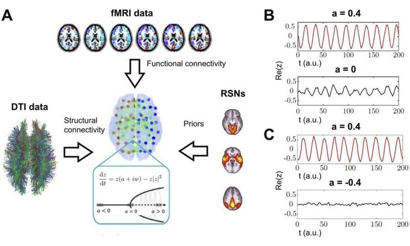 Functional in silico dissection of the brain during the natural wake-sleep cycle