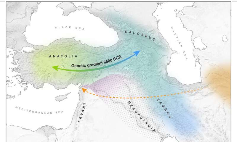 Genomic analysis shows long-term genetic mixing in West Asia before world's first cities