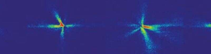 Ghostly particles detected in condensates of light and matter