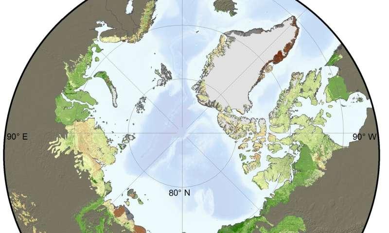 Global change ecologist leads NASA satellite study of rapid greening across Arctic tundra