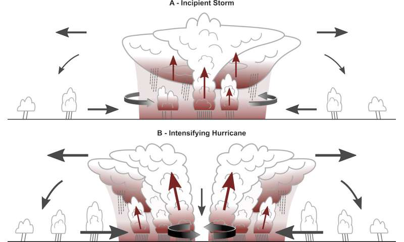 Greenhouse effect of clouds instrumental in origin of tropical storms