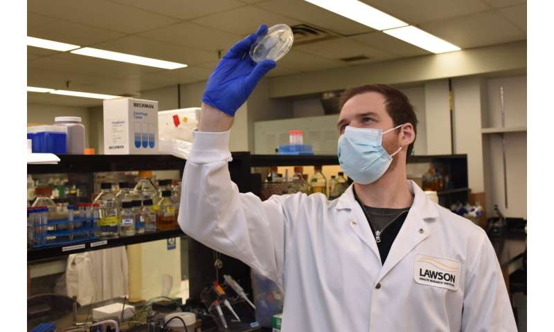 Gut microbiome may influence how cancer patients respond to oral therapies, study suggests
