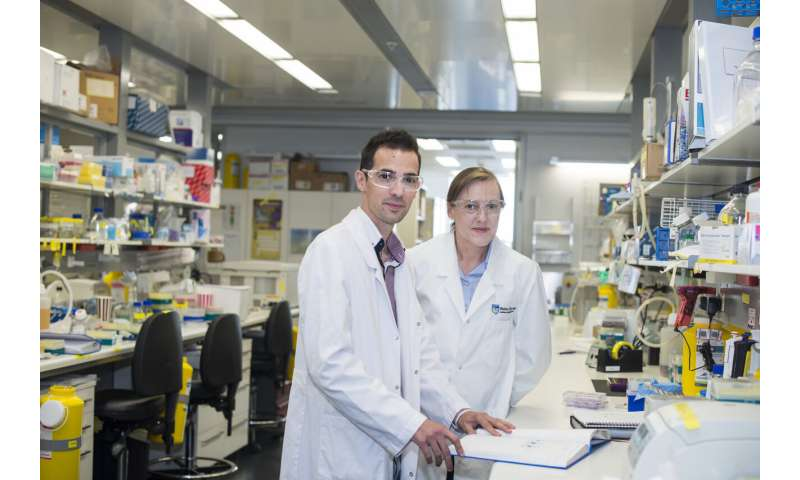 Gut reaction: How immunity ramps up against incoming threats