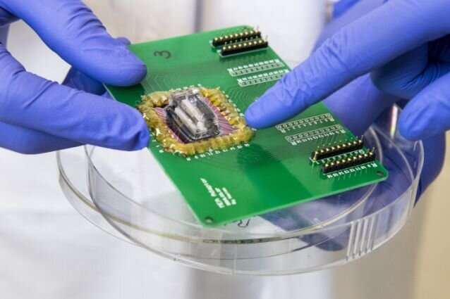 Heart attack on a chip: Scientists model conditions of ischemia on a microfluidic device