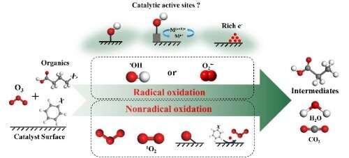 Heterogeneous catalytic ozonation: A promising method for water purification