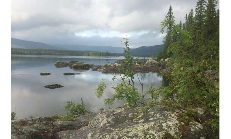 Higher day-time methane emissions from northern lakes