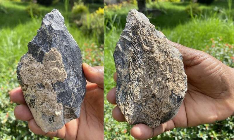 Homo erectus hand axe found in East Africa
