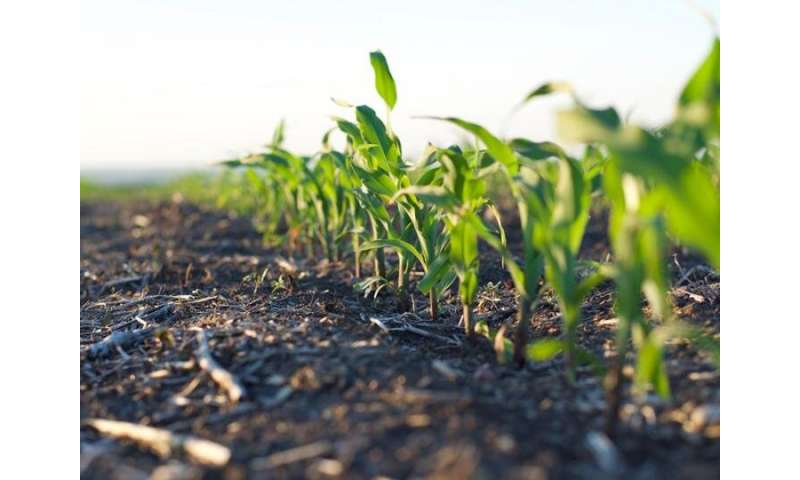 How atrazine regulations have influenced the environment