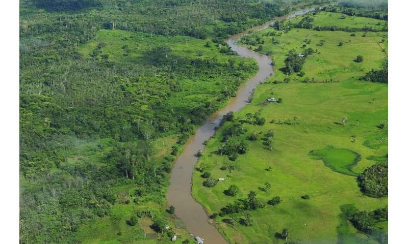 ¿Cuánta emisión de gases de efecto invernadero proviene de la deforestación tropical y la pérdida de turberas?