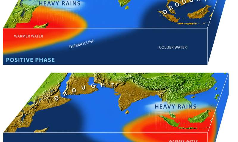 How new data can make ecological forecasts as good as weather forecasts