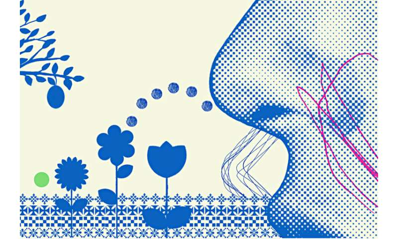 How scent, emotion, and memory are intertwined — and exploited