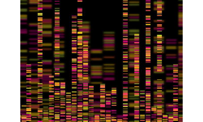 How to quickly and efficiently identify huge gene data sets to help coronavirus research