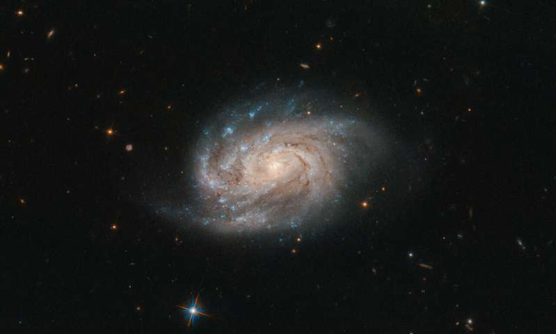 Image: Hubble views galaxy from famous catalog