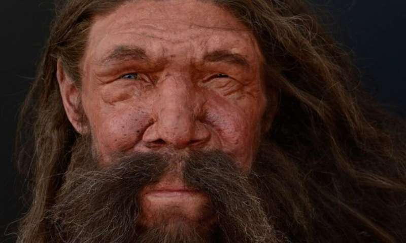 Humans and Neanderthals: less different than polar and brown bears