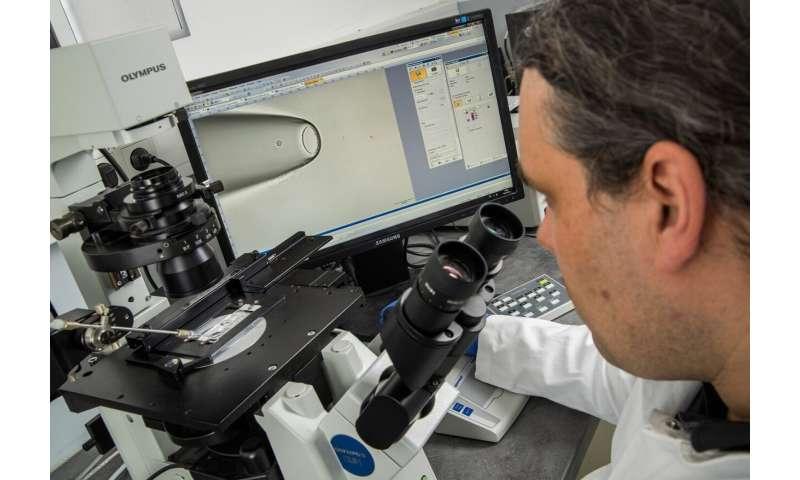 Hunting down life-threatening metastases