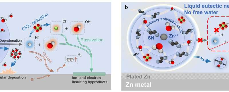 Hydrated eutectic electrolytes help improve performance of aqueous zn batteries