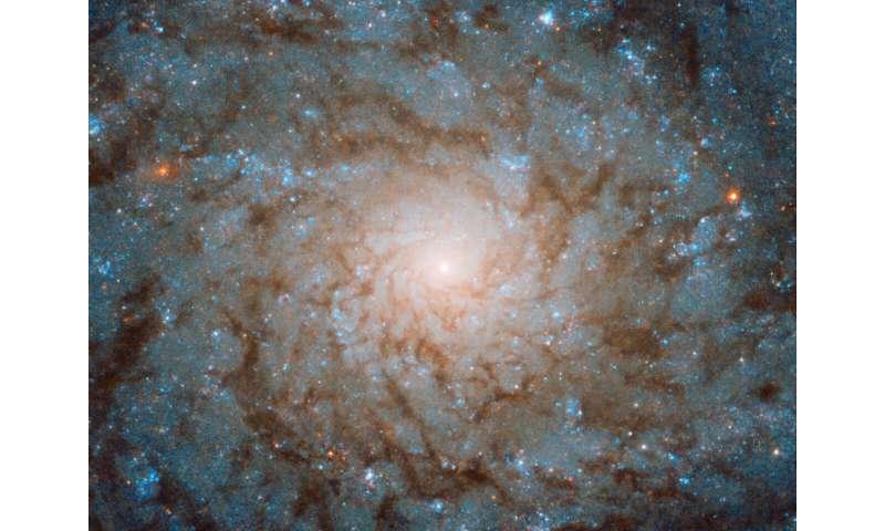 Image: Hubble fingerprints a galaxy
