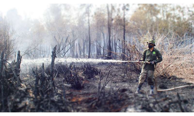 Indonesian wildfires a 'fixable problem'