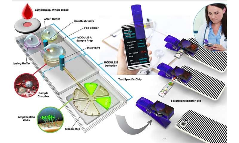Inexpensive, portable detector identifies pathogens in minutes