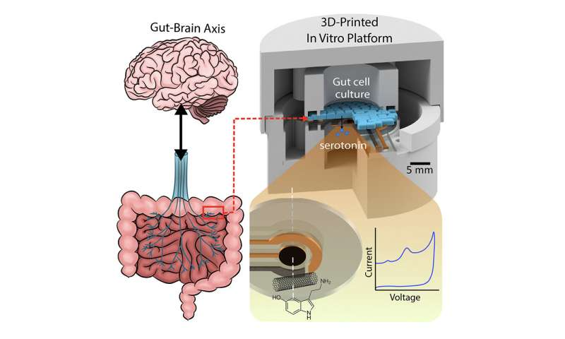 Ingestible capsule that could help demystify the gut-brain axis