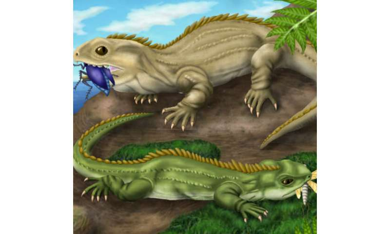 Insect-crunching reptiles on ancient islands of the U.K.