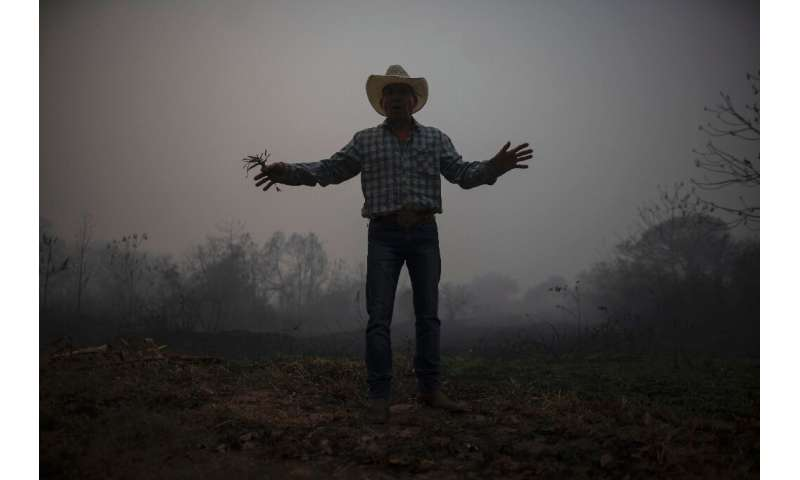In this file picture taken on September 13, 2020 a man gestures in a burnt area of the Pantanal in Brazil, part of a large area
