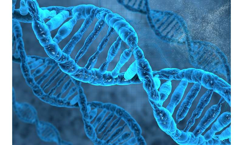 Is DNA key to whether you get COVID-19?