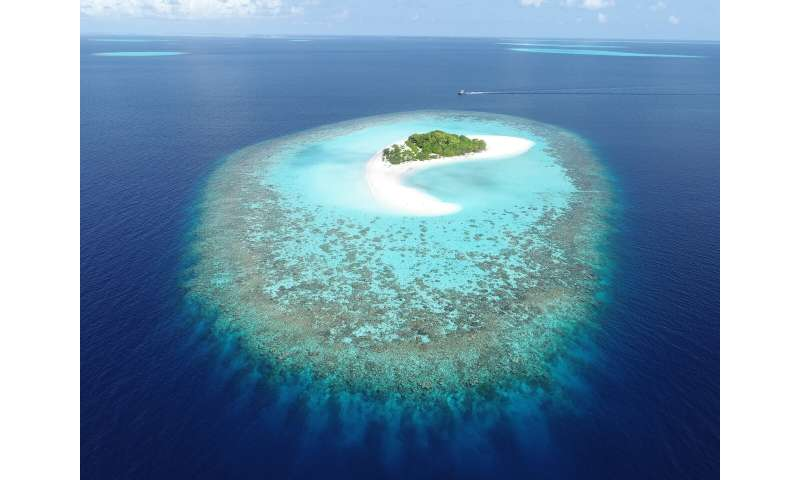 Island 'drowning' is not inevitable as sea levels rise