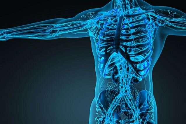 Is Vitamin K the Secret Key to Bone Strength?