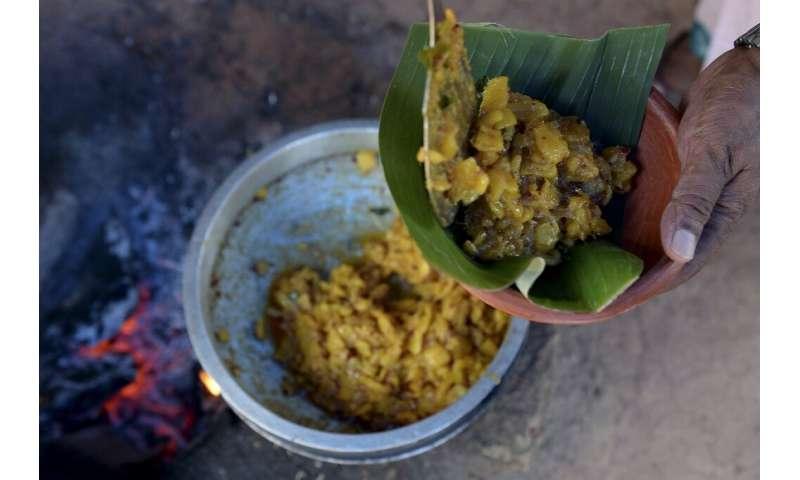 La nueva fama internacional de Jackfruit es un cambio masivo para una planta que, aunque se utiliza en platos locales, se ha visto durante mucho tiempo.