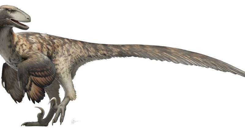 Jurrassic Park Got It Wrong Research Indicates Raptors Didn T