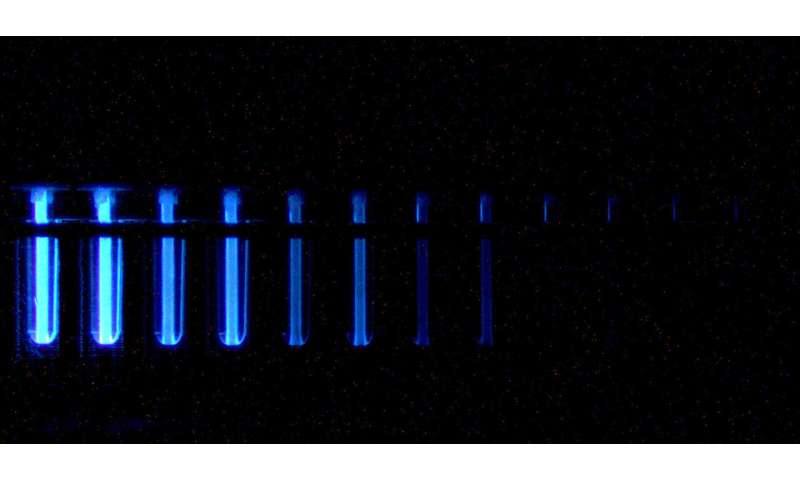 Lab-on-a-chip offers faster means of identifying best plasma donors in COVID fight