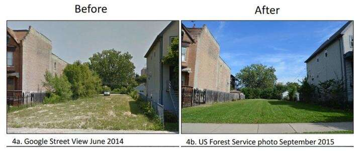 Large Lot Program shows the power of private land stewardship in addressing urban vacancy